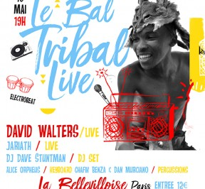 LE BAL TRIBAL 16 Mai 2017 (finale)